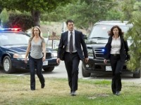 Criminal Minds  – Staffel 8