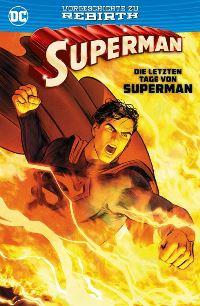Die letzten Tage von Superman, Rechte bei Panini Comics