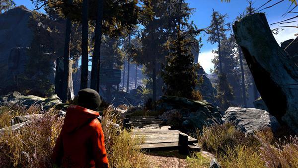 Through the Woods Bild 1