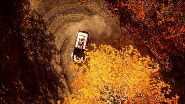 DiRT Rally 2 Bild 2