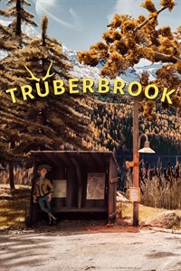 Trüberbrook, Rechte bei Headup Games
