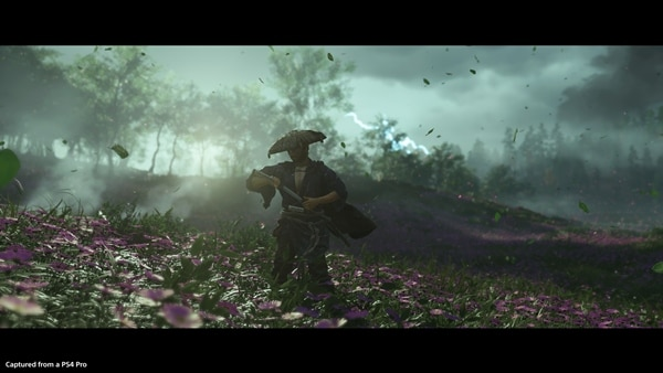 Ghost of Tsushima Bild 3
